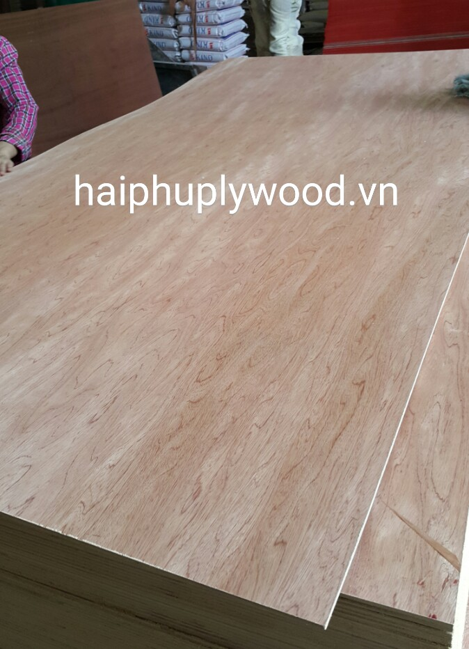 PLYWOOD WITH SAPELE FACE/BACK